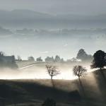 polvo-anadeseria-blog-de-microrrelatos-pensamientos-abstractos