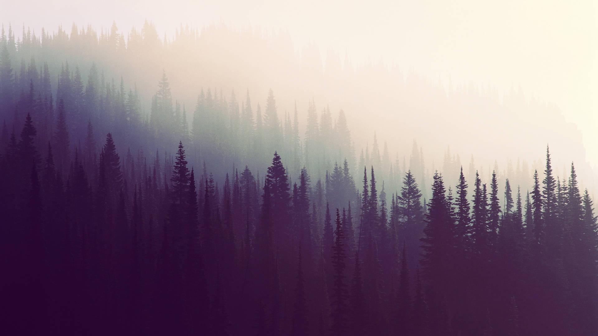 respirar-anadeseria-reflexiones-de-la-vida-microrrelatos-pensamientos-abstractos